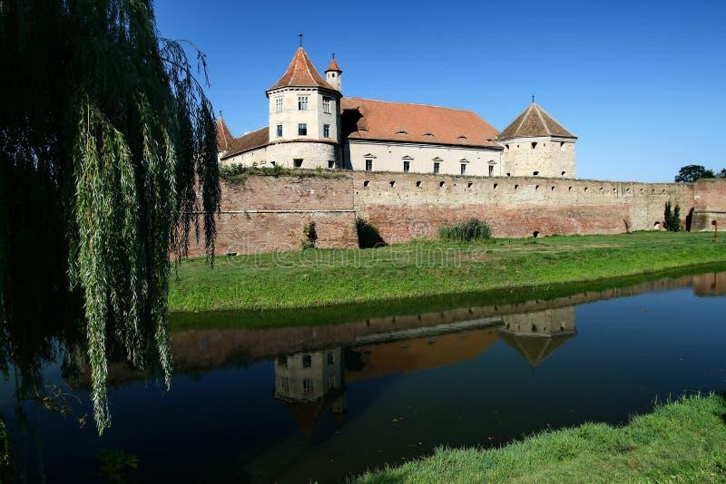 城堡fagaras 库存图片
