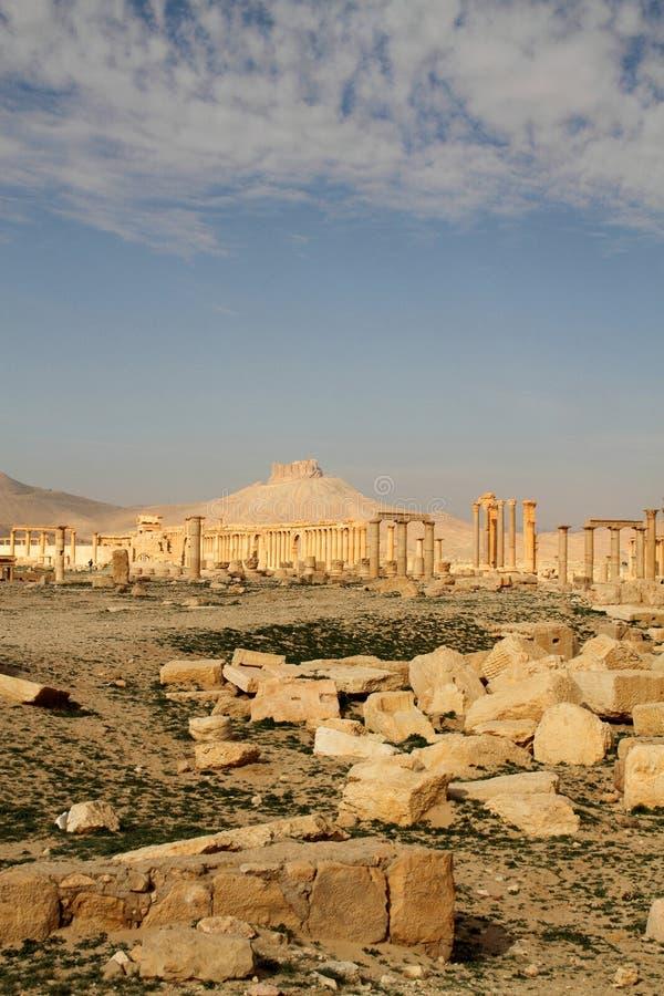 城堡ibn maan扇叶树头榈qala废墟 免版税图库摄影