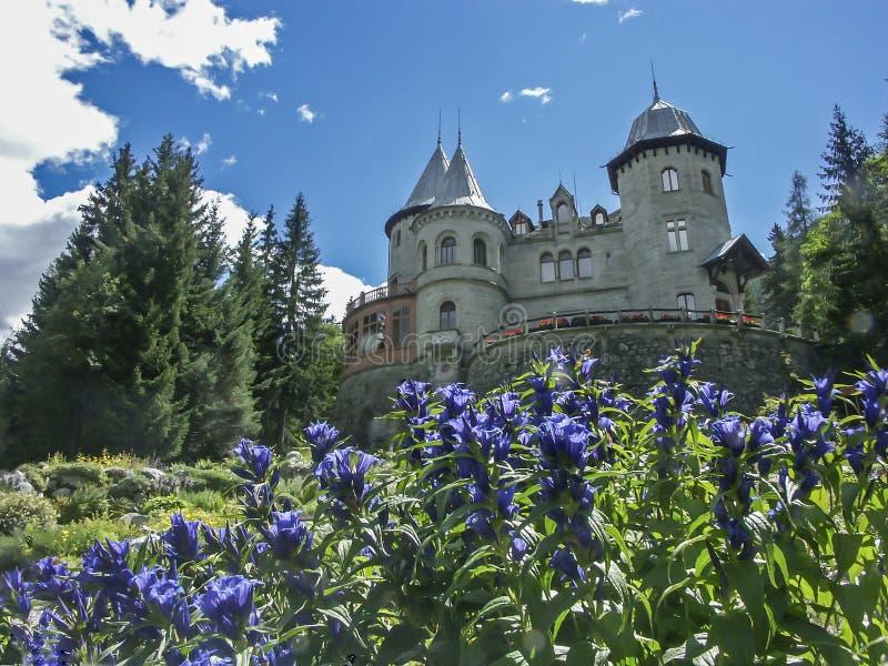 城堡Savoyen 免版税库存图片