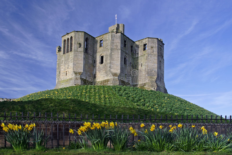 城堡warkworth 免版税库存照片