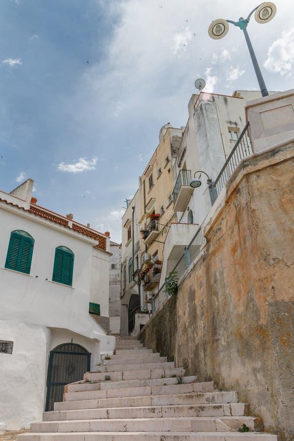 城市与各种各样的房子和细节的街道视图特写镜头视图  免版税库存照片