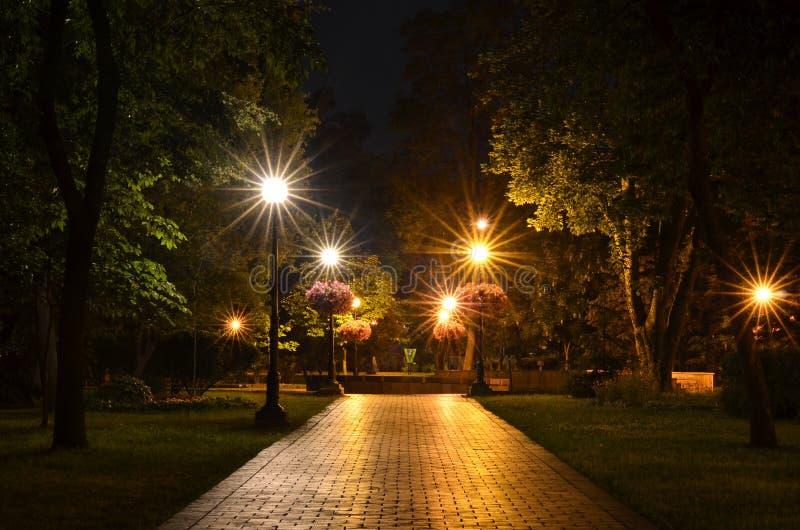 城市公园在夜 免版税图库摄影