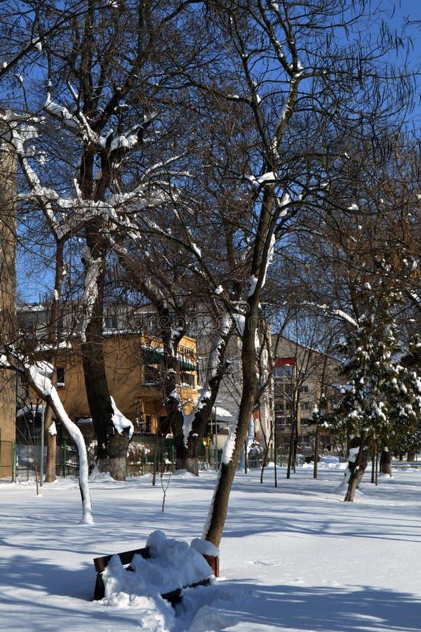 城市公园5的3月故事 免版税图库摄影