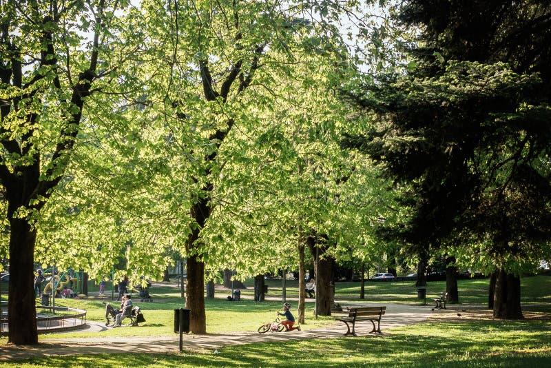 城市公园trentino春天 免版税库存照片