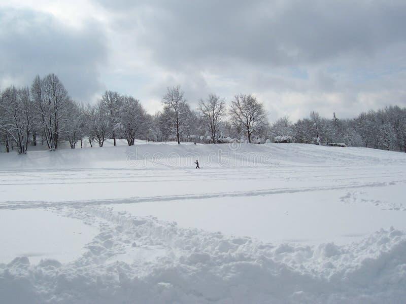 城市国家(地区)交叉滑雪 免版税库存照片