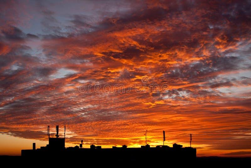 城市大楼上美丽的夕阳 库存照片
