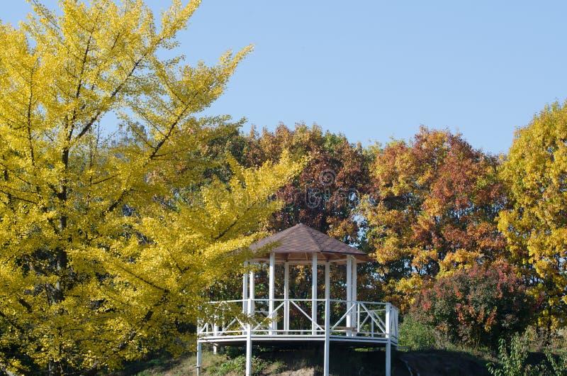 城市庭院风景有在一间木凹室的看法 免版税库存图片