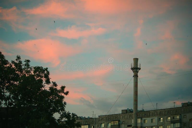 城市日落和管子剪影和高层建筑物全景  库存照片