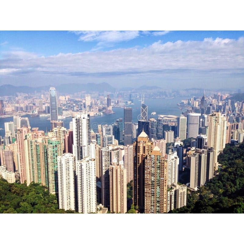 城市查出在空白的摩天大楼 库存照片