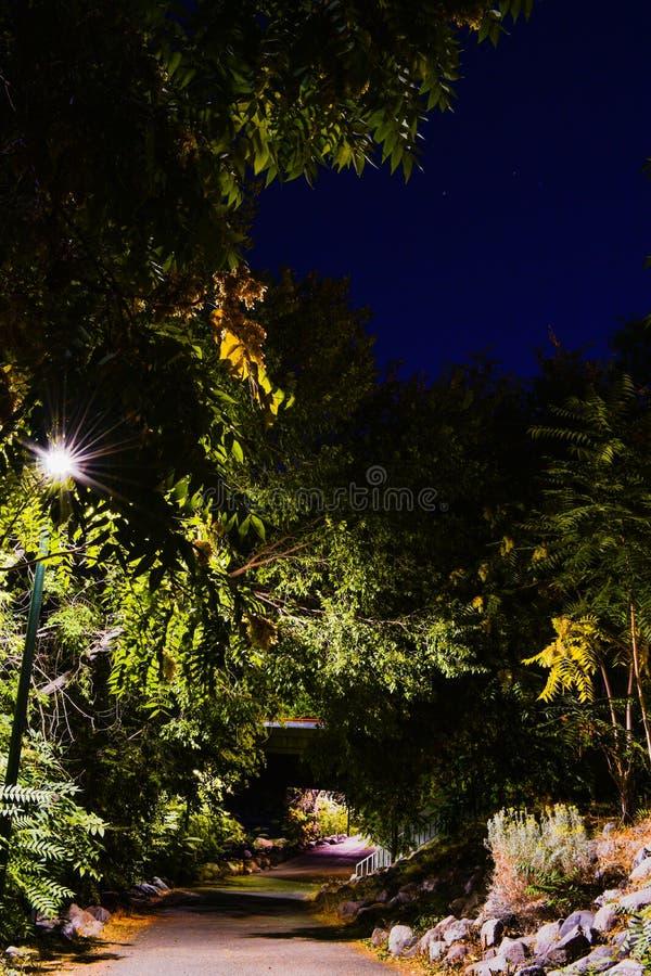 城市河滨夜行 库存照片
