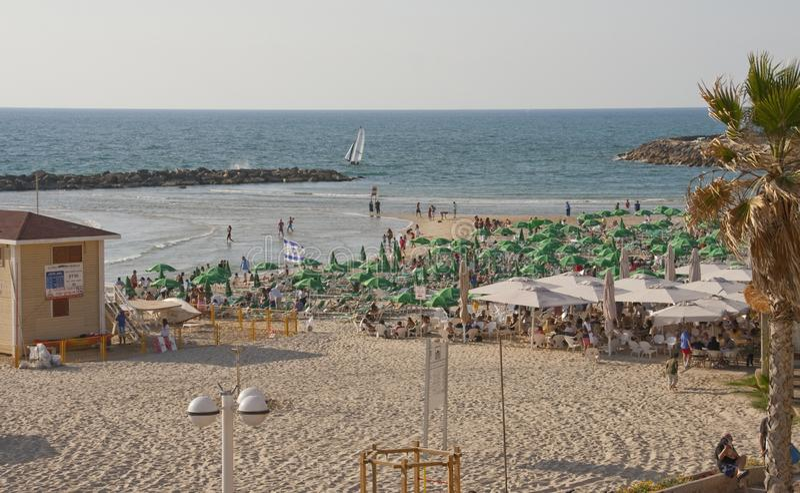 城市海滩在特拉唯夫以色列 免版税库存图片
