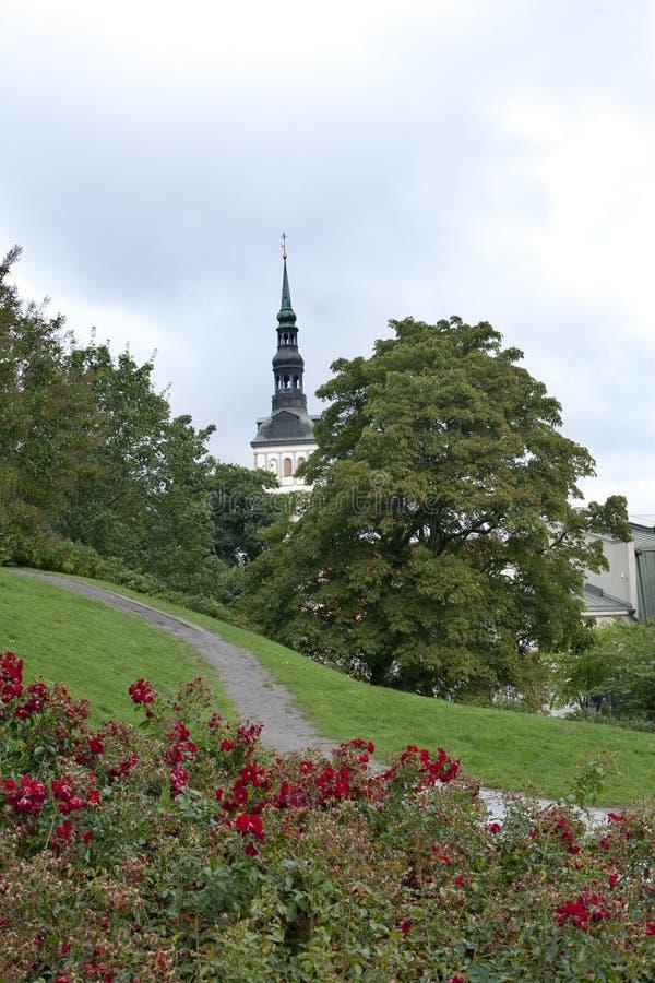 城市爱沙尼亚大厅老塔林托马斯塔城镇翻板天气 圣尼古拉斯教会Niguliste 免版税图库摄影