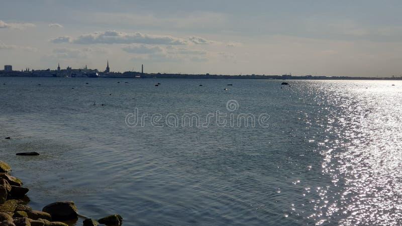 城市的海边视图海景蓝色波浪银色下午塔林全景从海塔林海湾波罗的海的在夏天 库存图片