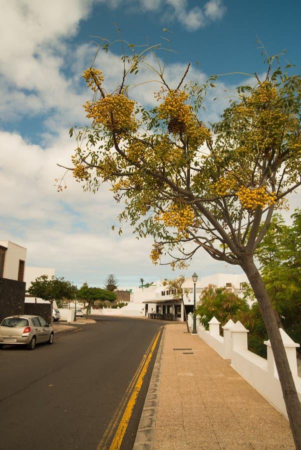 城市视图在兰萨罗特岛 免版税库存照片