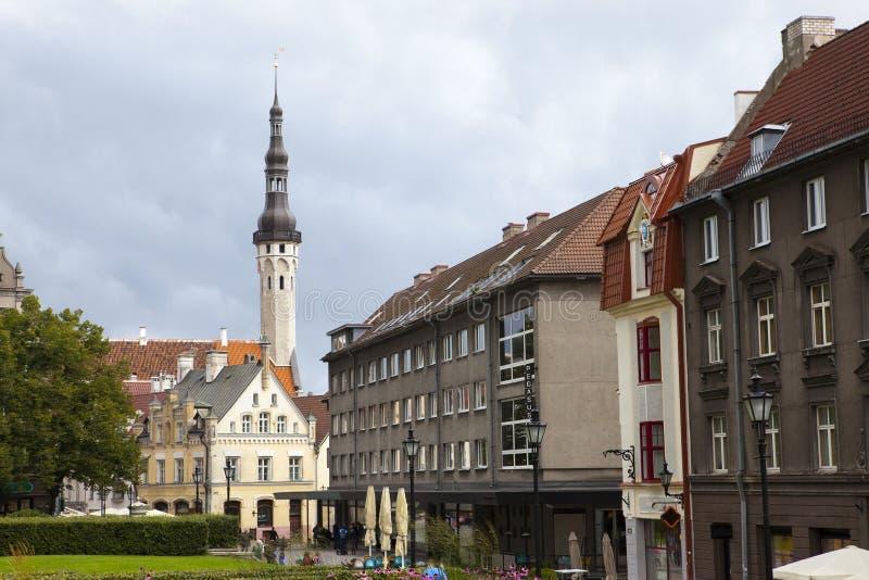 城市eston安置老街道塔林 塔林 爱沙尼亚 库存图片