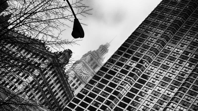 城镇厅,街市芝加哥美国 库存图片