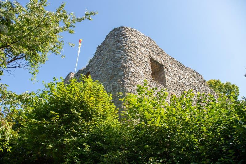 城镇Neuenfels城堡废墟在树包围的黑森林里 图库摄影
