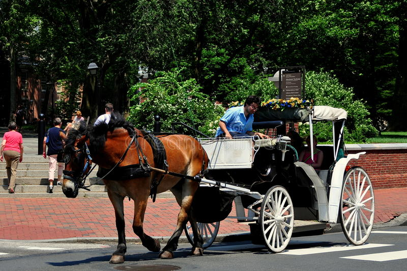 费城, PA :有游人的马支架 库存图片