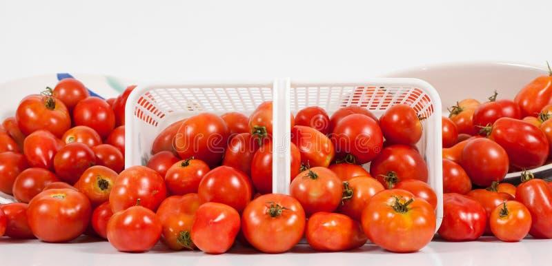 Download 域前全景蕃茄视图 库存照片. 图片 包括有 红色, 有机, 全景, bataan, 新鲜, 视图, 工作室 - 15682774