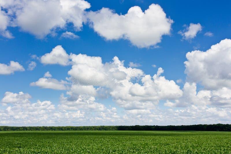 域和云彩 免版税库存照片