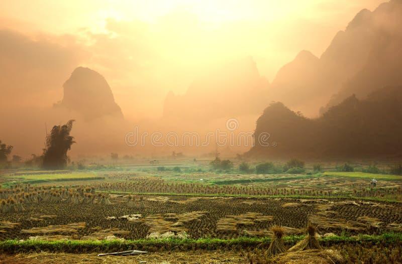 域在越南 图库摄影