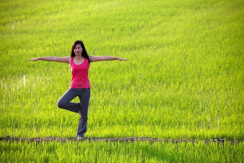 域实践常设瑜伽的女孩稻 免版税库存图片