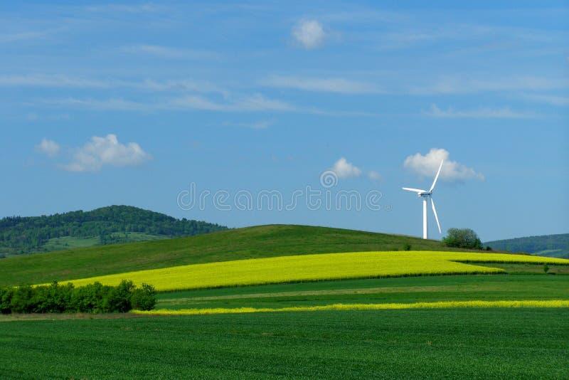 域绿色风车黄色 免版税库存图片