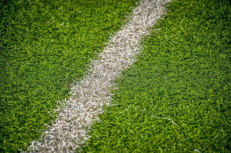 域草线路足球白色 免版税图库摄影