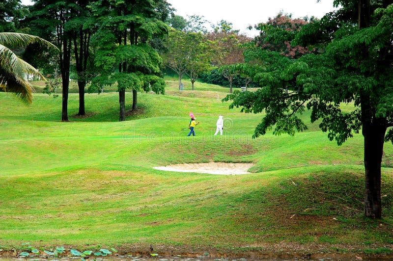 域高尔夫球 免版税图库摄影