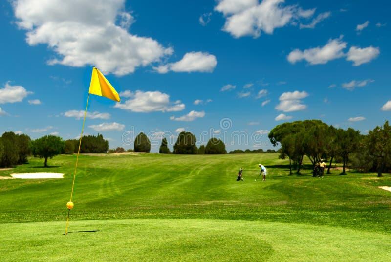 域高尔夫球 库存图片
