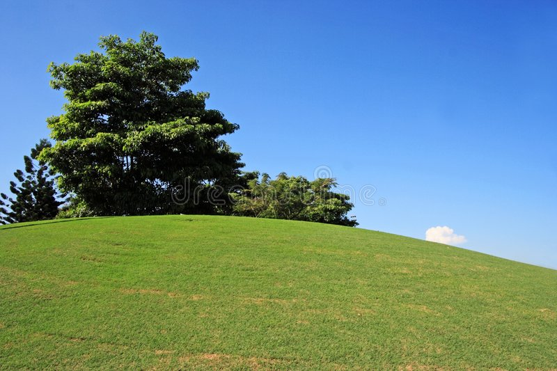 域高尔夫球 图库摄影