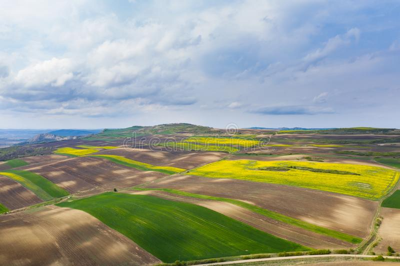 培养的春天领域鸟瞰图 库存照片