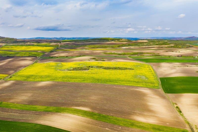 培养的春天领域鸟瞰图 免版税库存图片