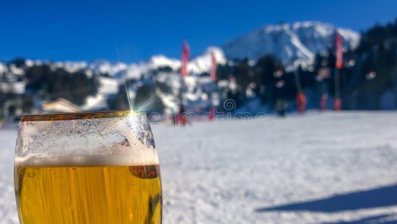 培养玻璃对多雪的山 库存照片
