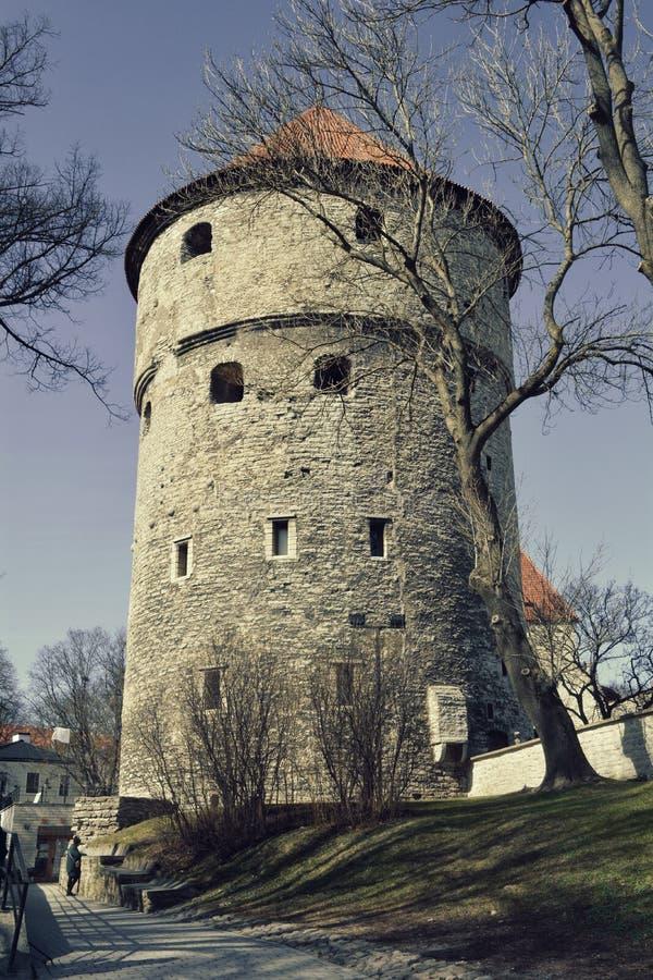 基克在de KA¶kk火炮塔在塔林,爱沙尼亚 库存照片