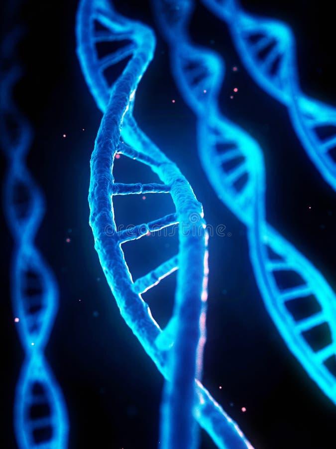 基因的例证 库存例证