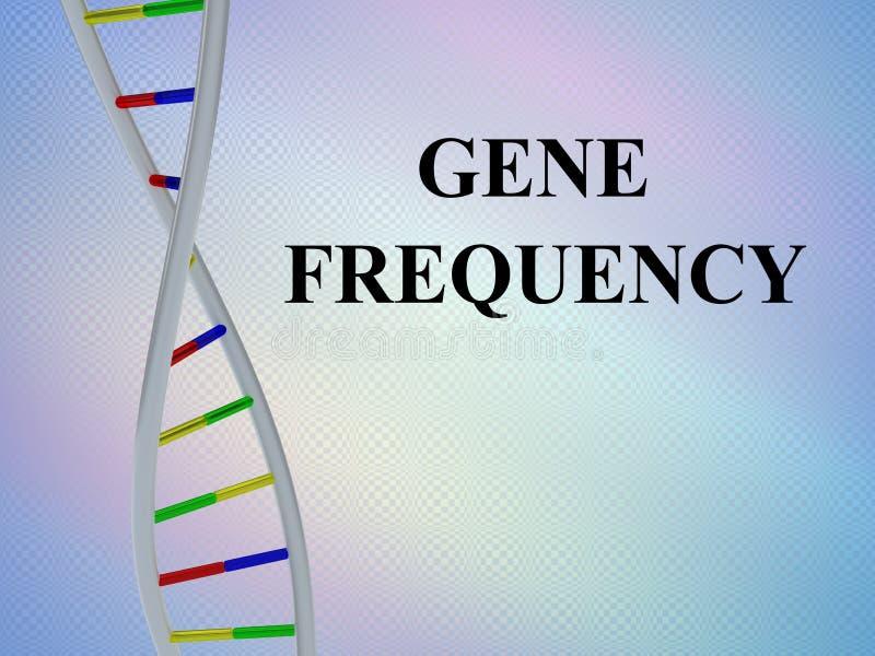 基因频率概念 库存例证