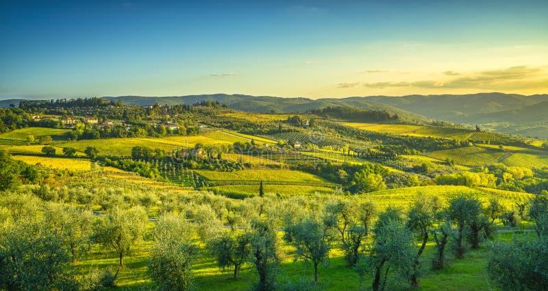基安蒂葡萄园的潘扎诺和日落全景 意大利托斯卡纳 库存图片