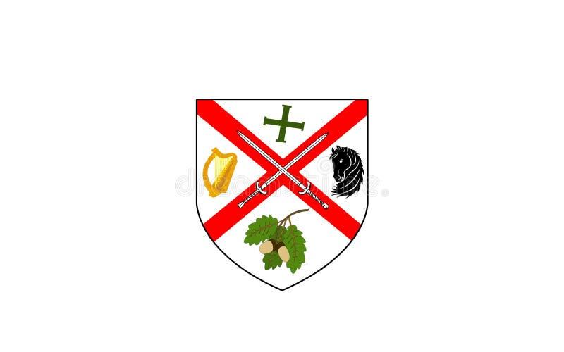 基尔代尔郡旗子是一个县在爱尔兰 向量例证