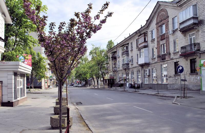 基希讷乌市摩尔多瓦春天空街道病毒盛行背景 库存照片