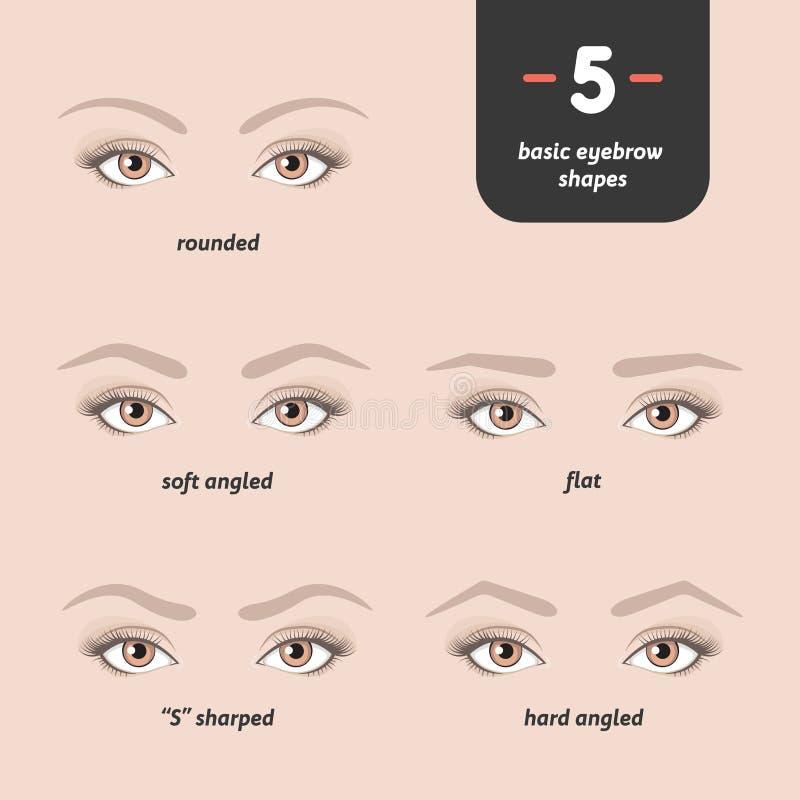 5基本的眼眉形状 图库摄影