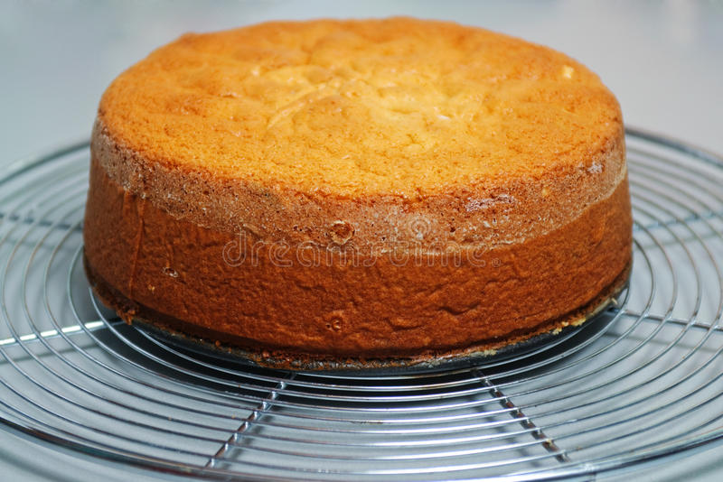 基本蛋糕姜 库存照片