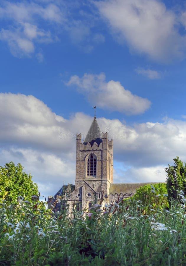 基督教会大教堂在都伯林,爱尔兰 库存照片
