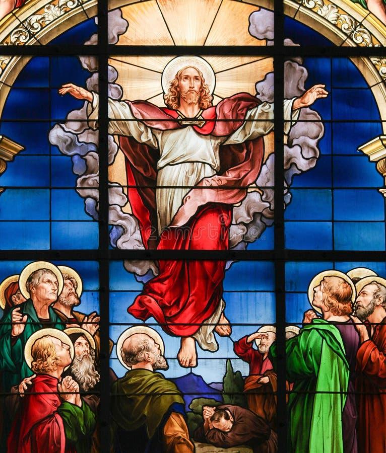 基督-彩色玻璃上生  库存图片