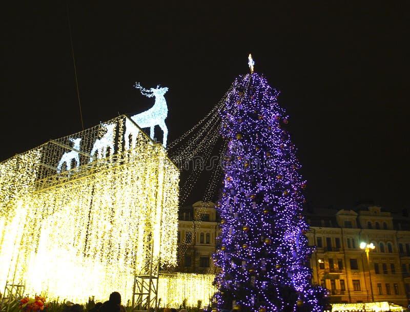 基辅 乌克兰 圣诞节我的投资组合结构树向量版本 库存图片