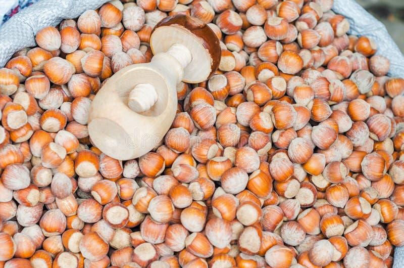 堆与木胡桃钳的整个棕色榛子 库存图片