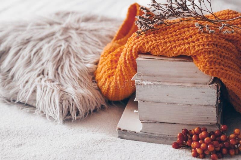 堆书和舒适被编织的毛线衣在温暖的背景和有荚莲属的植物和干燥标本集的 秋天冬天概念 免版税库存图片