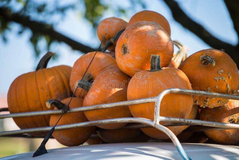 堆南瓜在农夫市场上 免版税库存图片