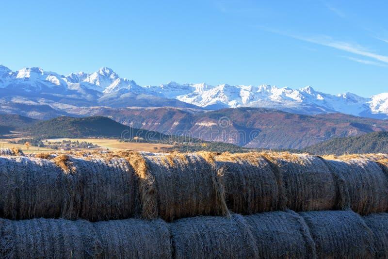 堆在一个领域的大干草捆在有的里奇韦科罗拉多 库存照片
