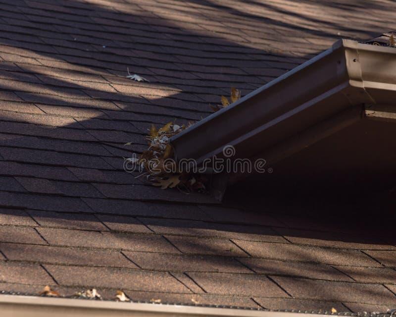 堆在住宅家雨天沟的干叶子在得克萨斯 库存照片
